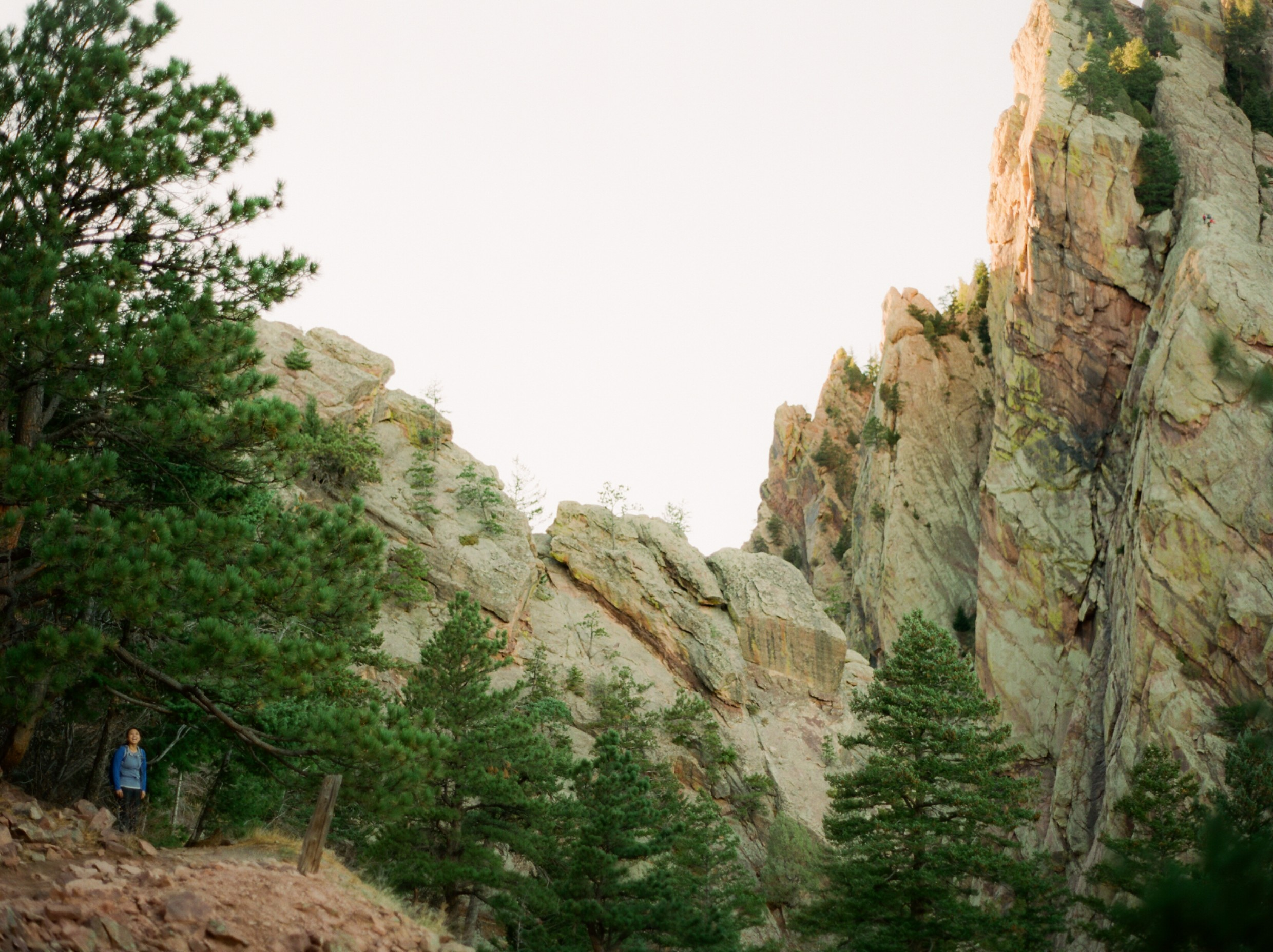 Rocky mountains national park cool and amazing how those douglas firs just grow on the cliffs sciox Image collections